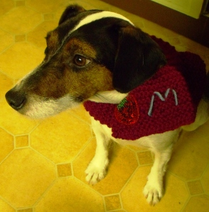 Margie models her Christmas scarf. I think she was pleased with it!