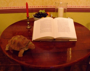 Display in the Great Parlour at Gilbert White's House, showing a copy of The Natural History of Selborne and a model of Timothy the tortoise.