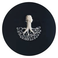 Runaway tree - wax on mirror back series, 2009. © Felicity Powell