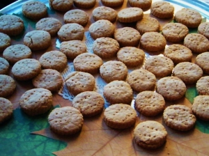 Cinnamon Cakes made by Dr Annie Gray from The Knight Family Cookbook. ©Come Step Back In Time